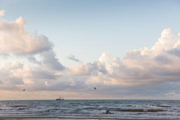 Galveston Island, Texas.