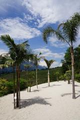 """"""" Ein Platz an der Sonne """": Liegestuhl unter Palmen"""