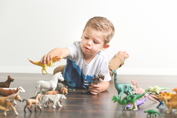 Little boy playing with dinosaur and animal action toys at home