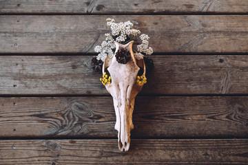 Still life of decorated skull
