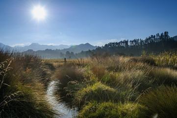 Tairua River, Coromandel