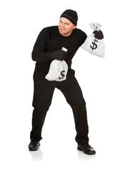Burglar: Stealing Money Bags