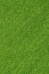 Artificial grass for background1