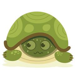 cartoon scared turtle