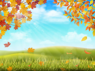 Wall Murals Light blue Rural hilly landscape in autumn season. Tree branches with yellow and red leaves on front plan. Grass with fallen foliage on background. Vector realistic illustration.