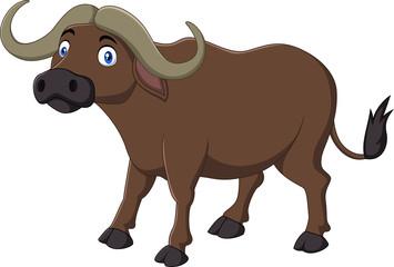Cartoon Buffalo isolated on white background