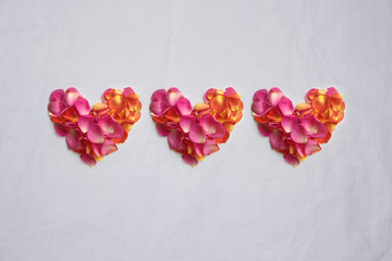 Rose petals hearts valentines day background pink orange 2