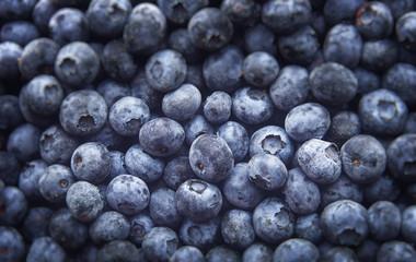 Freshly picked blueberries, Healthy food