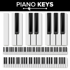 Piano Keyboard Vector. Realistic Isolated Illustration. Musical Piano Key Top View. Keyboard Pad