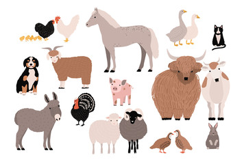 Farm pets colorful collection. Cute domestic animals set. Hand drawn vector illustration on white background.