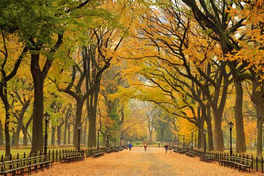 USA, New York City, Manhattan, Central Park, The Mall