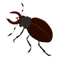 The horned beetle. vector illustration. Drawing by hand.