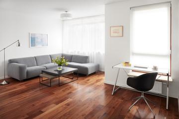 Modern living room, scandinavian interior