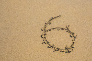 Six number written on sand on summer beach