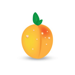 Peach vector isolated
