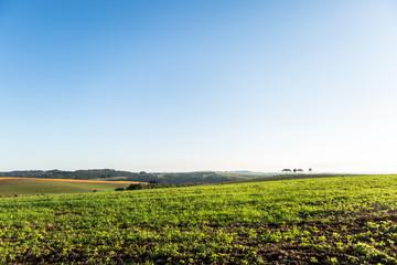 Agricultura - Sul do Brasil