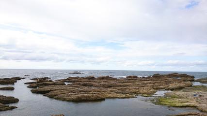 地層の見える海岸の岩