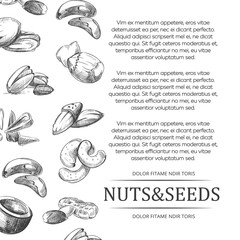 Banner or poster with hand sketched nuts and seeds