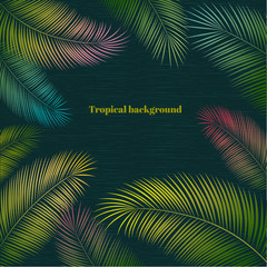 Tropical background. Palm leaves. A pattern of colored exotic leaves. Border. Frame.