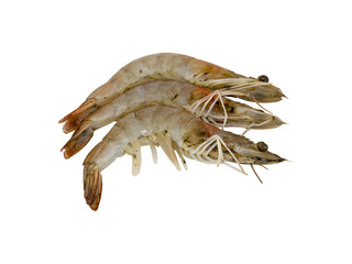 Three fresh shrimps isolated on white background. Clipping path