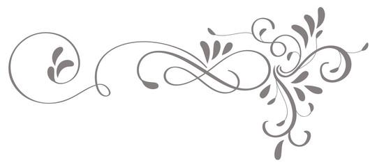 calligraphy flourish art of vintage decorative whorls for design. Vector illustration EPS10