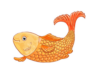 Gold fish on white background. Vector doodle illustration.