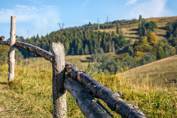 wooden fence on hillside near forest