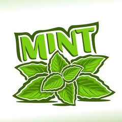 Vector logo for Mint herb, label with green leaves of peppermint, sprig of fresh spearmint, icon with title text - mint for natural products with menthol flavor, twig of mints herbal garnish on white.