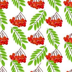 Rowan bunch berries red ripe leaf tree autumn season natural fruit seamless pattern background vector illustration.