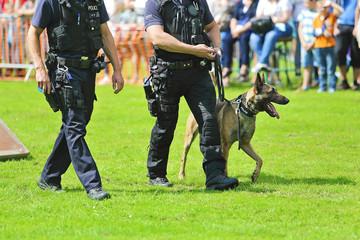 démonstration de chien policier de la brigade canine belge