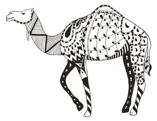 Camel zentangle stylized, vector, illustration, freehand pencil. Anti stress coloring books for kids and adults.