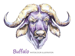 Watercolor formidable bull on the white background. African animal. Wildlife art illustration. Can be printed on T-shirts, bags, posters, invitations, cards, phone cases, pillows.