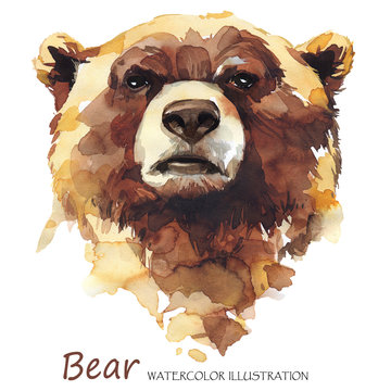 Watercolor bear on the white background. Forest animal. Wildlife art illustration. Can be printed on T-shirts, bags, posters, invitations, cards, phone cases, pillows.