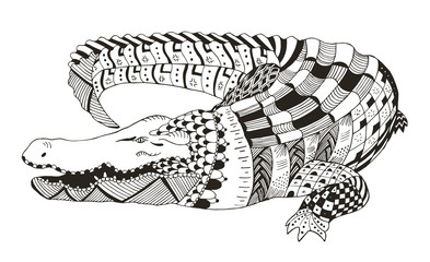 Crocodile zentangle stylized, vector, illustration, pattern, freehand pencil, hand drawn. Anti stress coloring books for kids and adults.