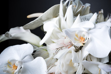 white lily bouquet with black background, shallow depth-of-field