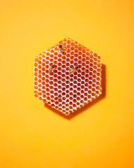 bees on honeycomb, on yellow background