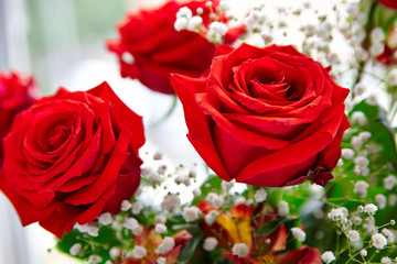 Bouquet of red roses close-up