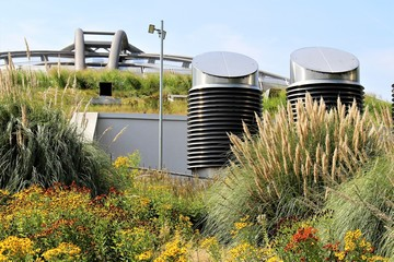 An Image of green Roof on a building Wall mural