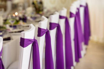 wedding chairs in covers and decorated purple ribbon and bows