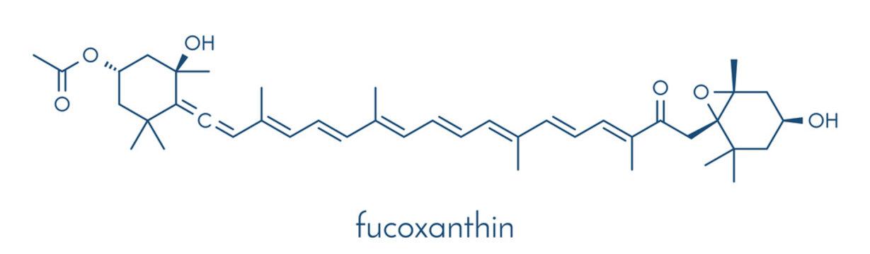 Fucoxanthin brown algae pigment molecule. Ingredient of some dietary supplements. Skeletal formula.