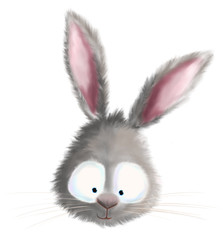 cute bunny rabbit head illustration
