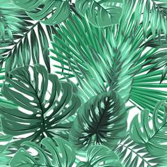 Tropical rainforest palm monstera leaves seamless pattern. Bright green on white island paradise background. Botanical vector design illustration.