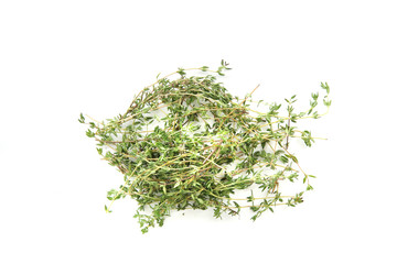 Thyme herb isolated in white background