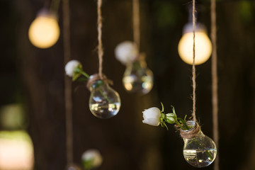 light bulb garland on the wedding