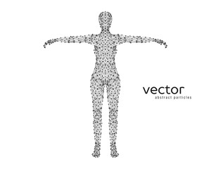 Abstract vector illustration of female body.