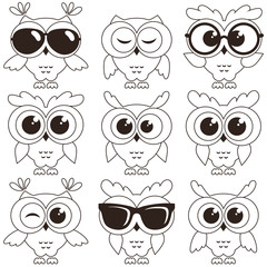 Set of cool owls isolated on white background