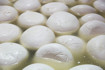 Making homemade mozzarella cheese, cheese ripens in brine