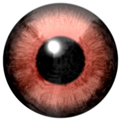 Beautiful scary abstract monster eye texture