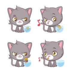 Cute gray cat moments