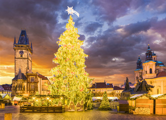 Wall Mural - Christmas tree in magical city of Prague at night, Czech Republic